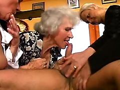 Four aged matures suck cock of man