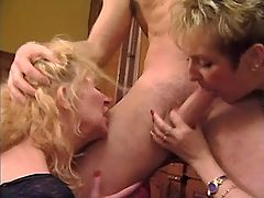 Two hot matures give blowjob to guy